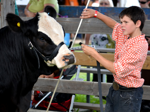 SNAPSHOT - Great weather, turnout for 154th Annual Comber Fair