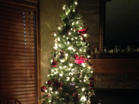 Show us your Trees! - Niforos Family Tree