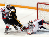Sting sweep home and home against Spits