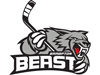 Brampton Beast announce AHL and NHL affiliates