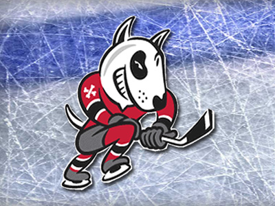 Sarris and Corneil commit to Niagara Ice Dogs