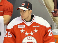 Greyhounds trade goaltender Nichols to Storm